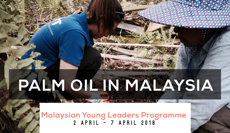 Intruiging Intricacies Of The Palm Oil Industry In Malaysia